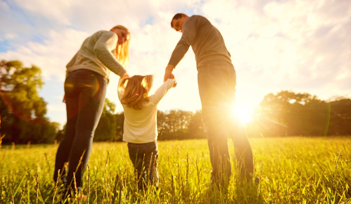 Family Bonds Are Primary -- They Are Weakening Dangerously