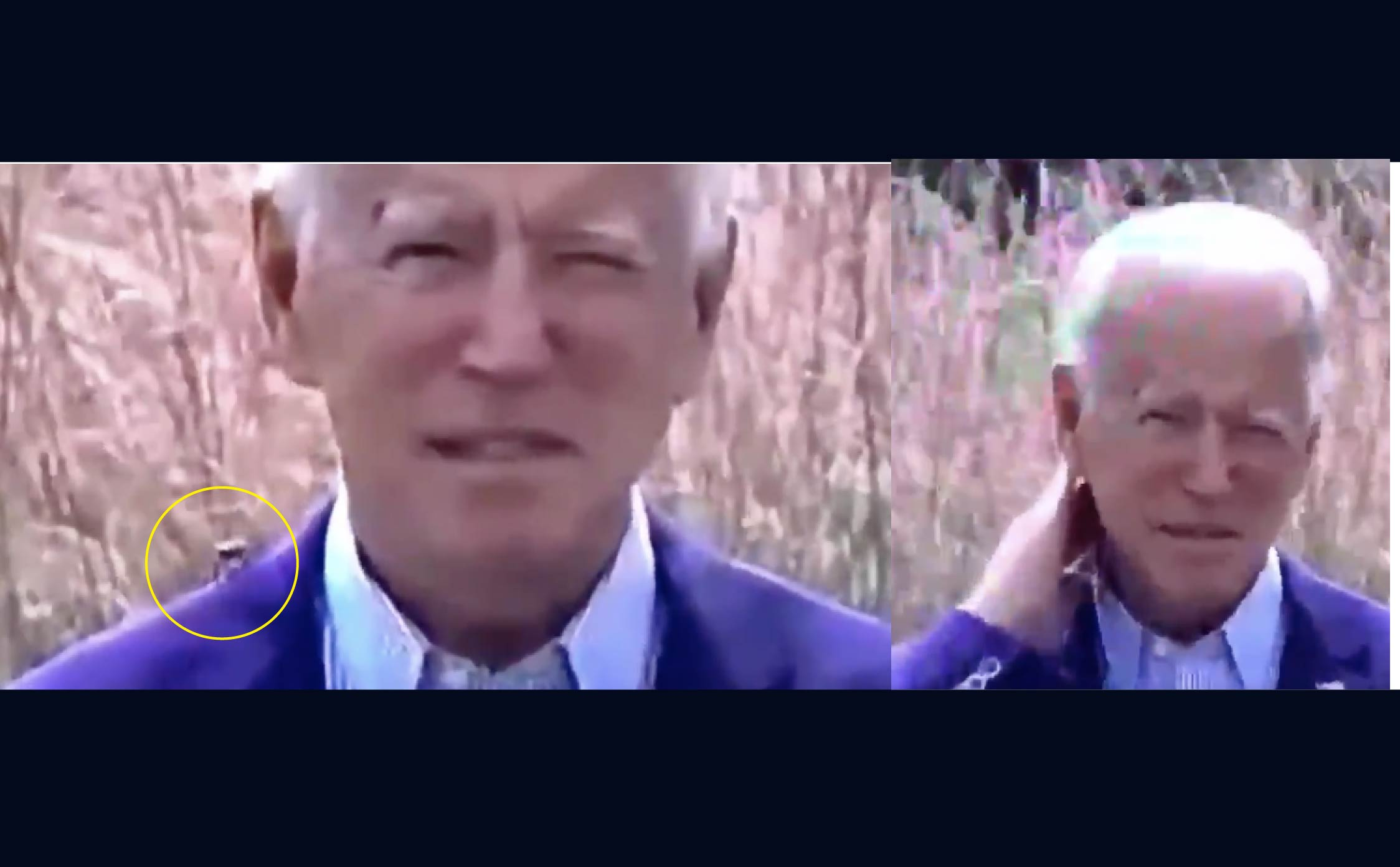 """[VIDEO] Pay Back? Giant Bug """"Sniffs"""" Around and """"Nuzzles"""" Biden's Neck During Live-Stream Speech"""
