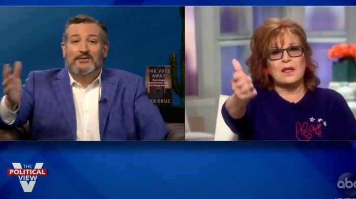 """[VIDEO] """"The View"""" Ladies Meltdown When Ted Cruz Mentions Cuomo's COVID Nursing Home Scandal"""