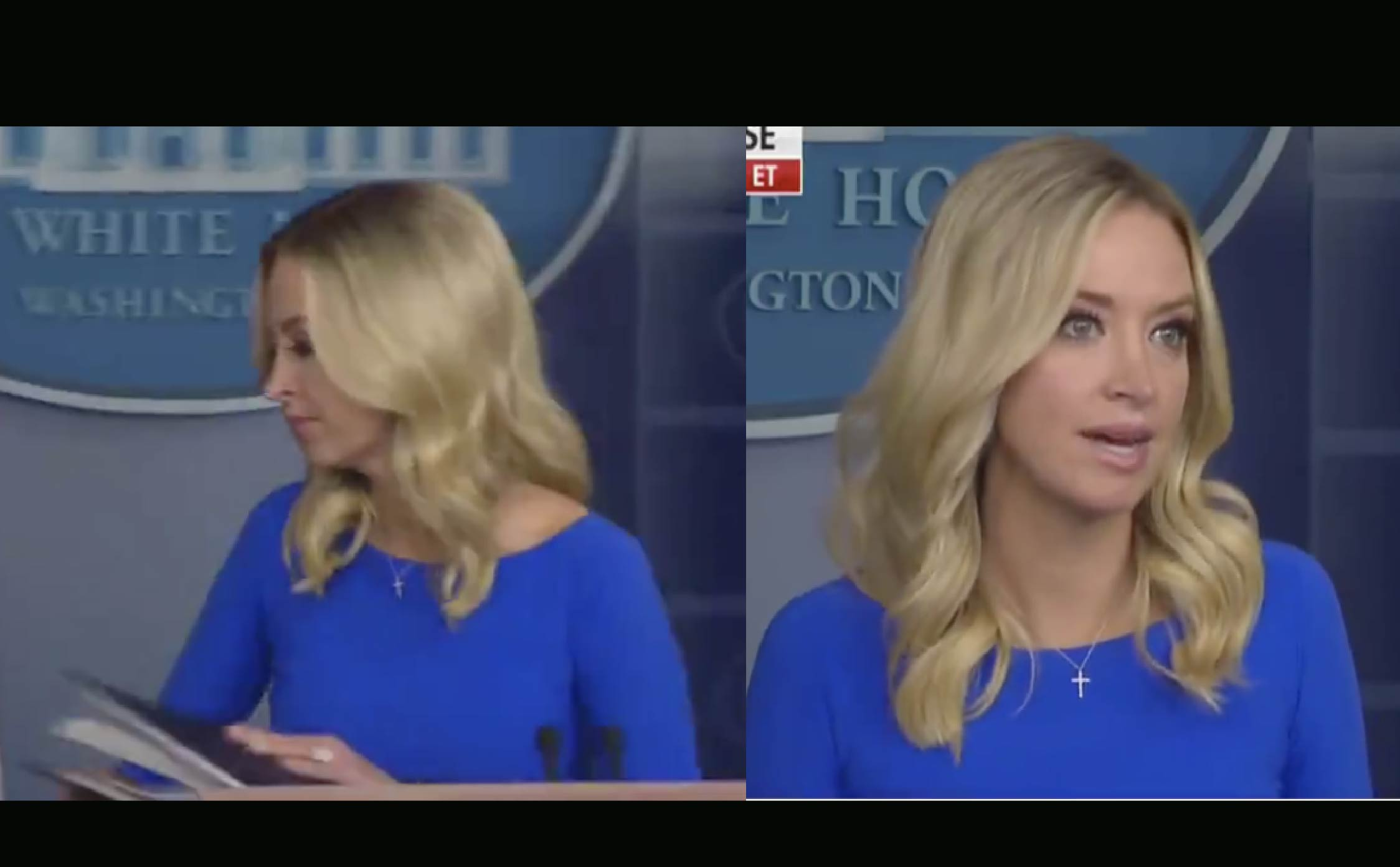 [VIDEO] The WH Press Corp Has Never Been Eviscerated So Savagely...And Afterward, Kayleigh Just Turned and Walked Away