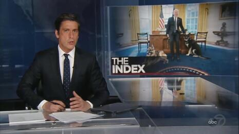 CBS, NBC Ignored Biden's Dog Attacking Another Person, ABC Downplays