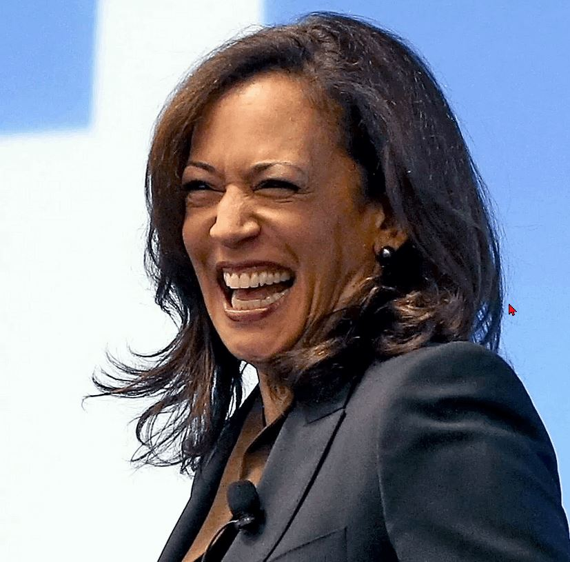 Kamala….Nobody Else is Laughing! - Conservative Daily News