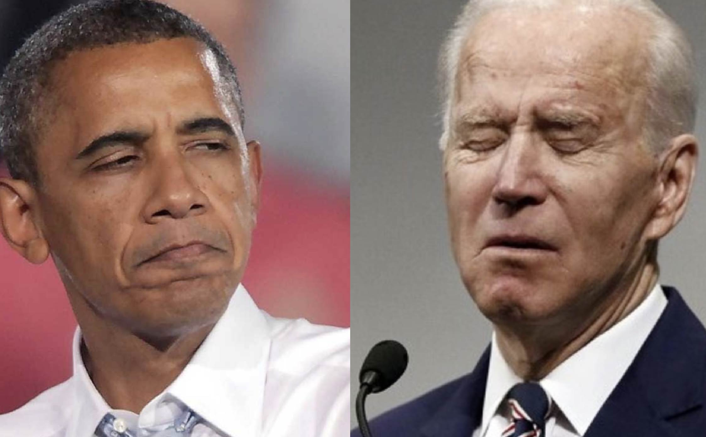 """Now We Know The """"Real Reason"""" Obama Refused to Endorse Joe...And This One's Gotta Sting"""